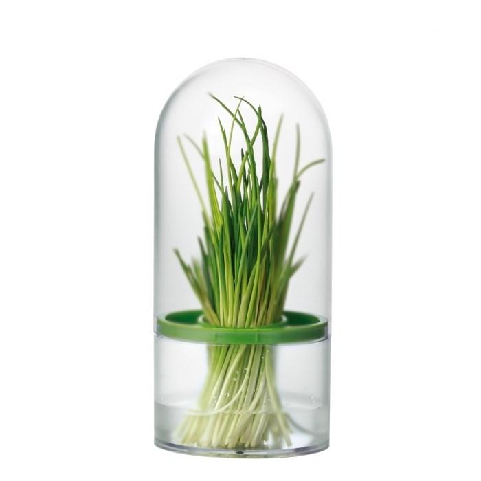 Емкость для хранения трав и зелени Tescoma - фото 7497