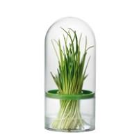 Емкость для хранения трав и зелени Tescoma